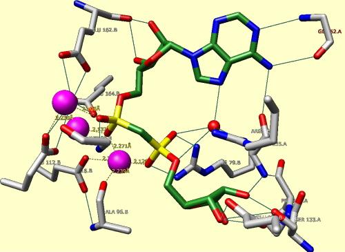 がん転移抑制酵素