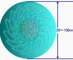 ナノカプセルDDS(ドラッグデリバリーシステム)実用化が加速